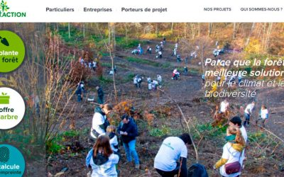 Partenariats : Reforest'Action & Now You Know